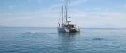 Майская Греция