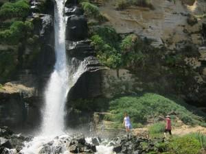 Дикий водопад