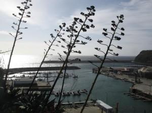 Вилу до Порту на Санта Марии.