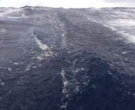 Don`t Panic Ocean 2018. Мадейра - Ла Пальма.